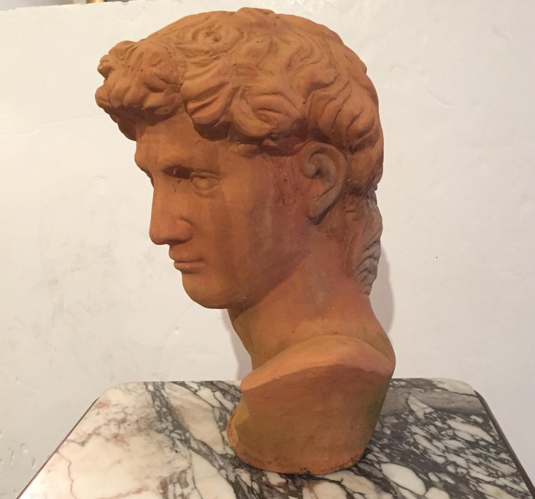 Mid-20th Century Classic Italian Terracotta Bust of David For Sale