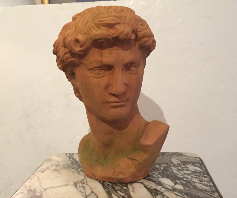 Classic Italian Terracotta Bust of David For Sale 1