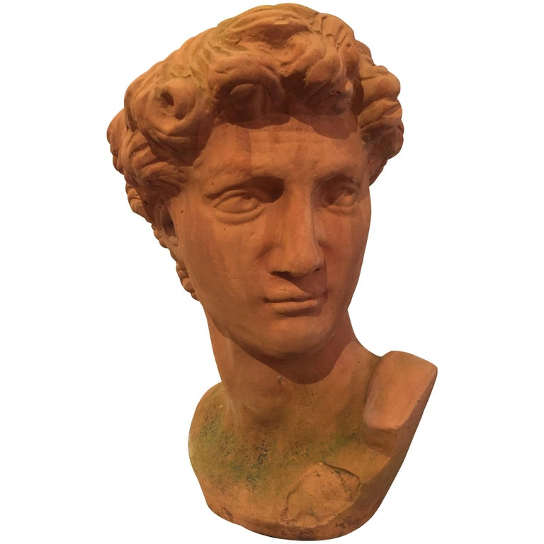 Classic Italian Terracotta Bust of David For Sale