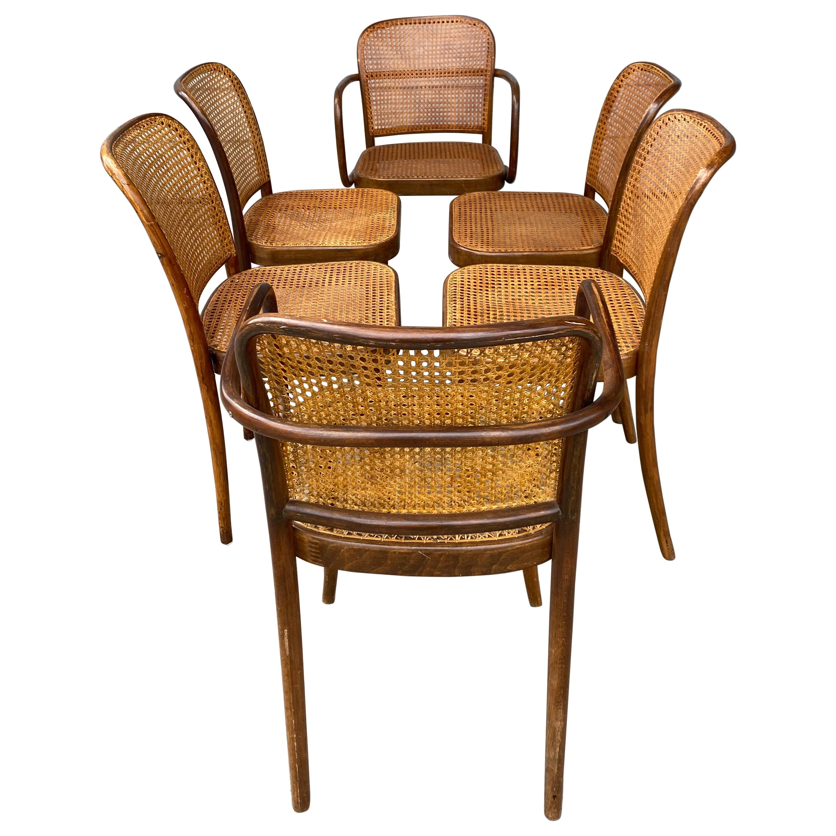 Classic Set 6 Bauhaus Wood and Cane Dining Chairs by Josef Hoffmann for Stendig