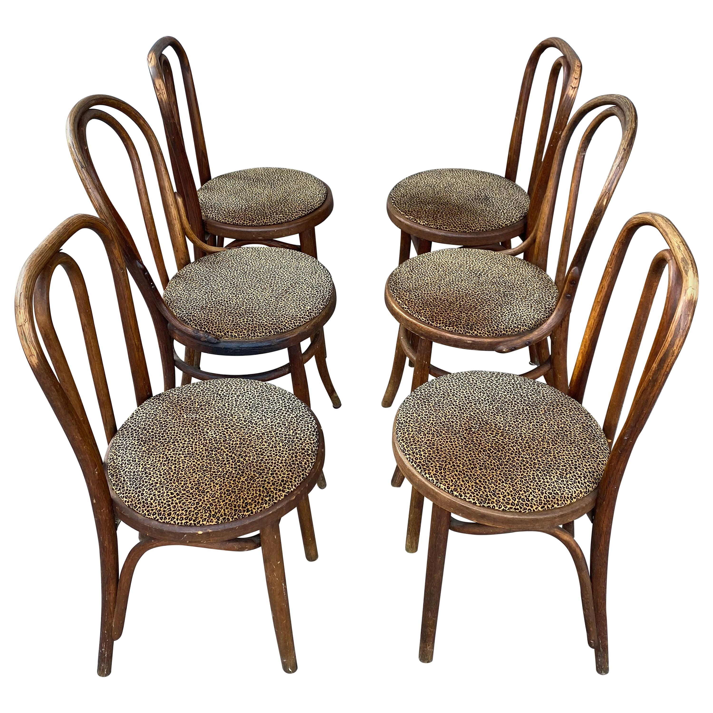 Classic Set of 6 Bentwood Cafe Dining Chairs, Attributed to Thonet