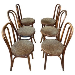 North American Dining Room Chairs