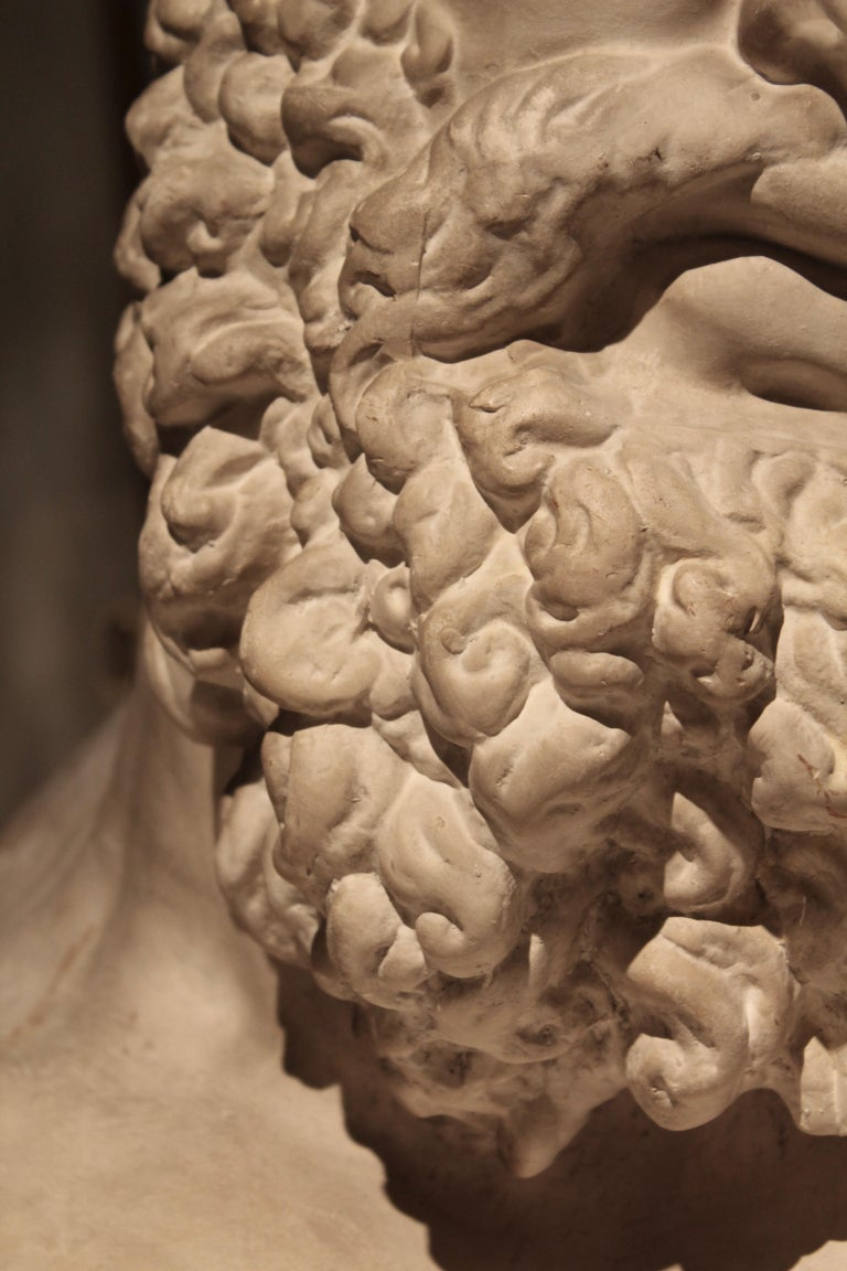 Classical Plaster Bust of the Farnese Hercules, circa 1950 For Sale 3