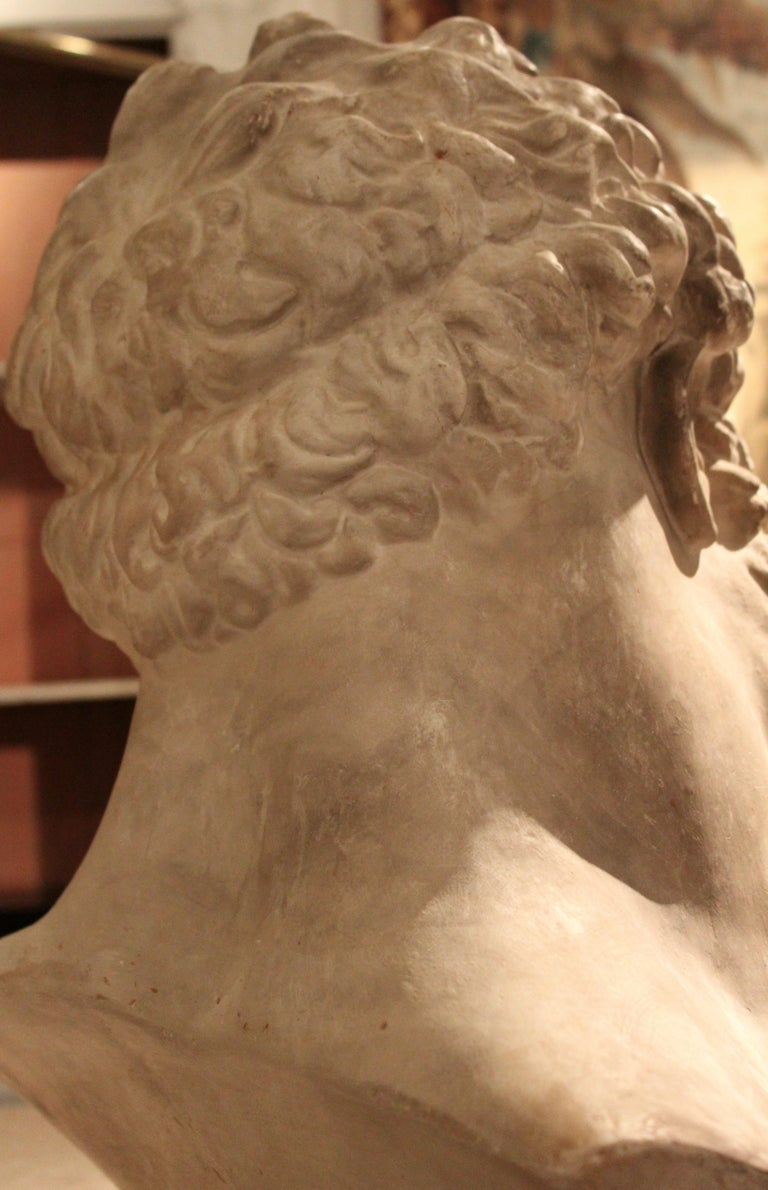 Classical Plaster Bust of the Farnese Hercules, circa 1950 For Sale 4