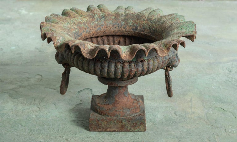French Classical Urn, France, 19th Century For Sale