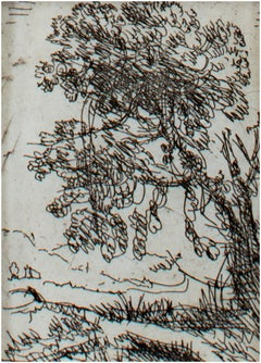 """Tree in a Landscape,"" etching by Claude Gellee (Le Lorrain)"