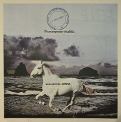 Horse by the Sea - Vintage Offset by Claudio Cintoli - 1974