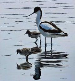 Keeping Close (Avocet and Chicks) - contemporary animal wildlife oil painting