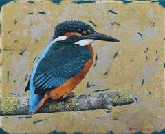 Kingfisher Study - contemporary realistic animal wildlife bird oil painting