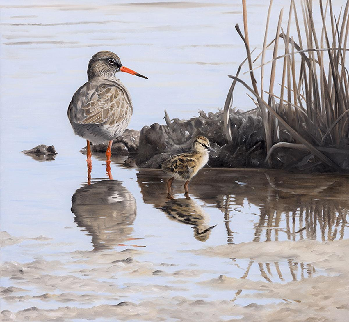 Redshank and Chick - oil redshank bird animal contemporary painting