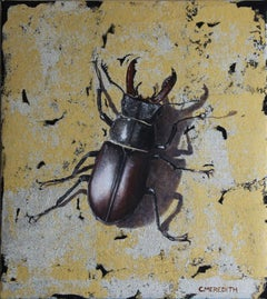 Stag Beetle - oil and gold leaf insect contemporary painting