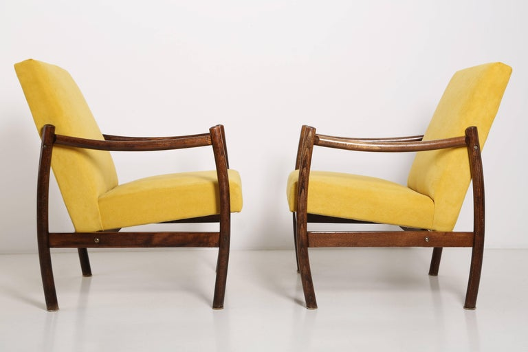 Mid-Century Modern Club Armchair, Yellow Velvet, 1960s For Sale