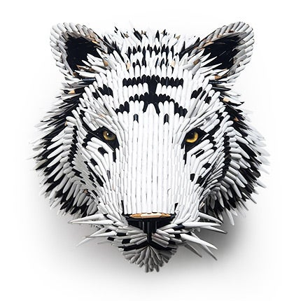Federico Uribe, White Tiger Head, 2017