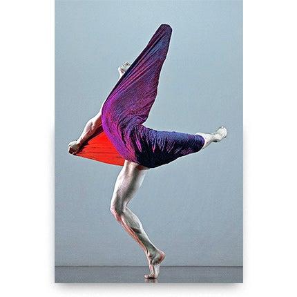 Guilherme Licurgo, Orchid, Desert Flow, 2014
