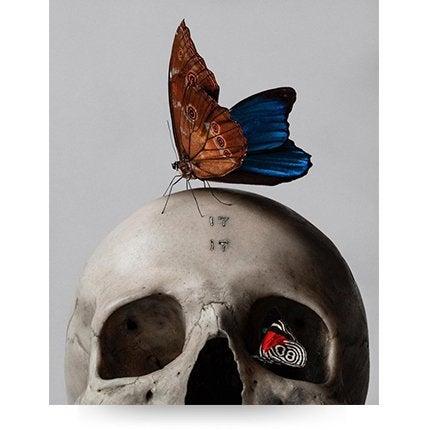 Mario Kroes, <i>Skull & Butterfly</i>, 2018