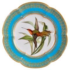 Coalport Dessert Plate, Humming Bird by John Randall, circa 1870
