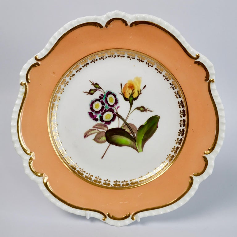 Coalport Porcelain Dessert Service, Botanical, Peach Ground, Regency 1820-1825 For Sale 4