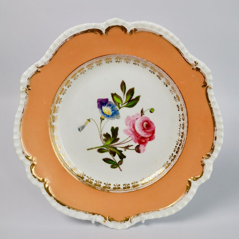 Coalport Porcelain Dessert Service, Botanical, Peach Ground, Regency 1820-1825 For Sale 5