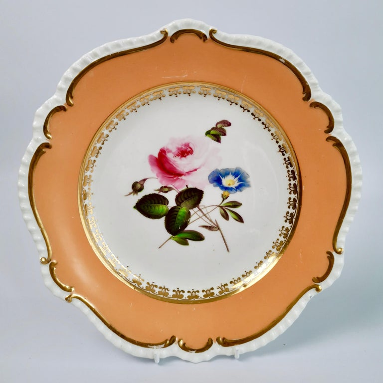 Coalport Porcelain Dessert Service, Botanical, Peach Ground, Regency 1820-1825 For Sale 6