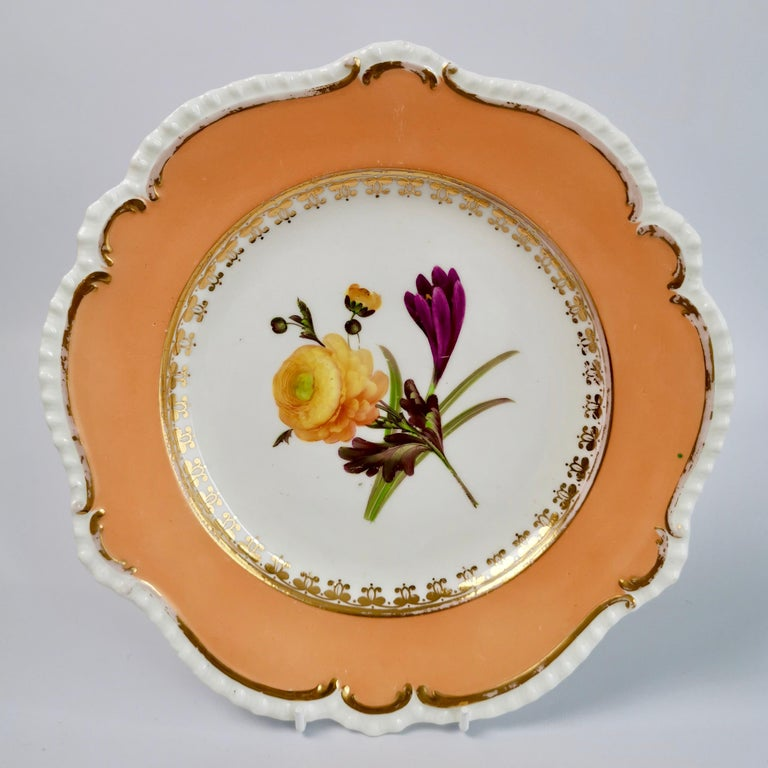 Coalport Porcelain Dessert Service, Botanical, Peach Ground, Regency 1820-1825 For Sale 7