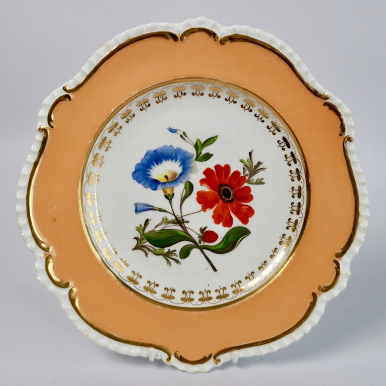 Coalport Porcelain Dessert Service, Botanical, Peach Ground, Regency 1820-1825 For Sale 13