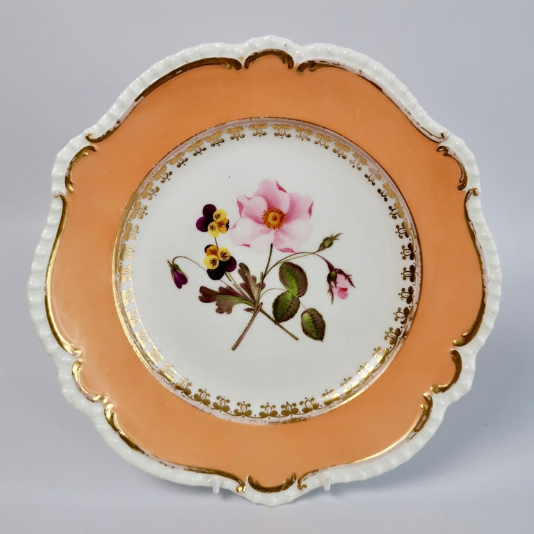 English Coalport Porcelain Dessert Service, Botanical, Peach Ground, Regency 1820-1825 For Sale