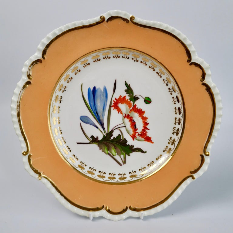 Hand-Painted Coalport Porcelain Dessert Service, Botanical, Peach Ground, Regency 1820-1825 For Sale