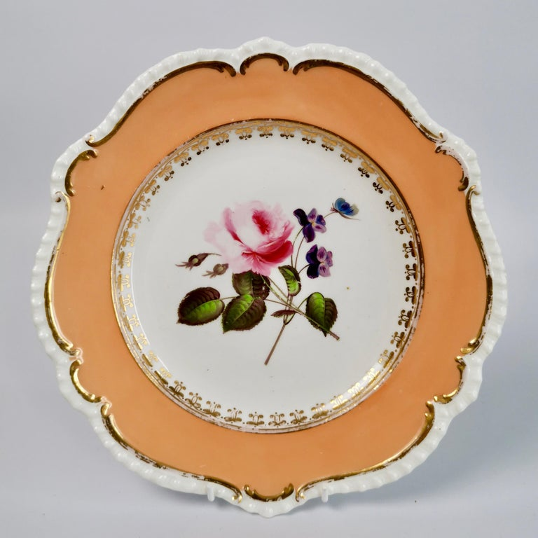Early 19th Century Coalport Porcelain Dessert Service, Botanical, Peach Ground, Regency 1820-1825 For Sale