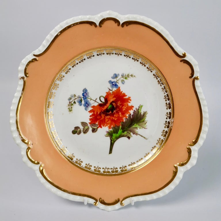Coalport Porcelain Dessert Service, Botanical, Peach Ground, Regency 1820-1825 For Sale 1