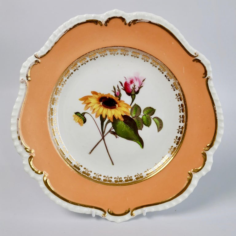 Coalport Porcelain Dessert Service, Botanical, Peach Ground, Regency 1820-1825 For Sale 2