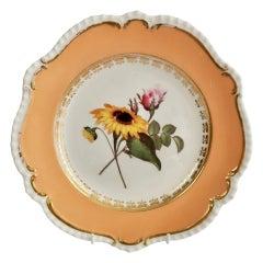 Coalport Plate, Peach with Flowers, Regency, Porcelain 1820-1825