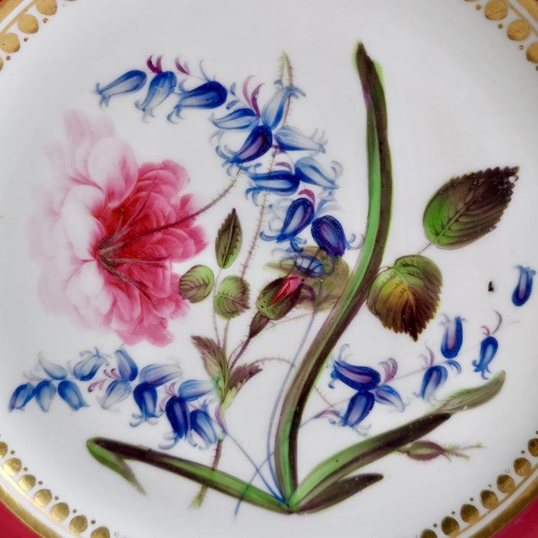 Coalport Porcelain Part-Dessert Service, Maroon Botanical Cecil Jones, 1820-1825 3