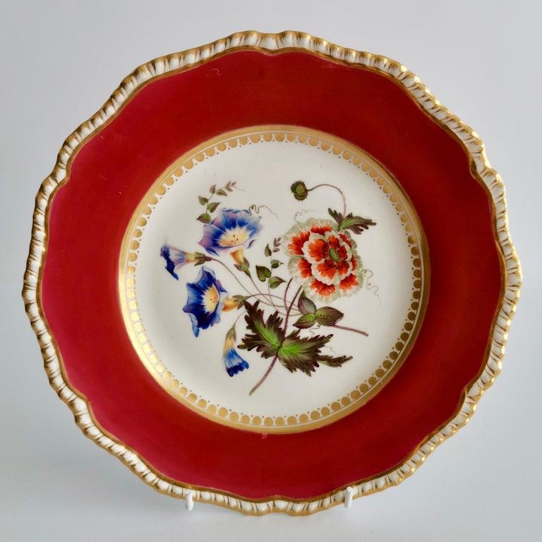 Coalport Porcelain Part-Dessert Service, Maroon Botanical Cecil Jones, 1820-1825 4