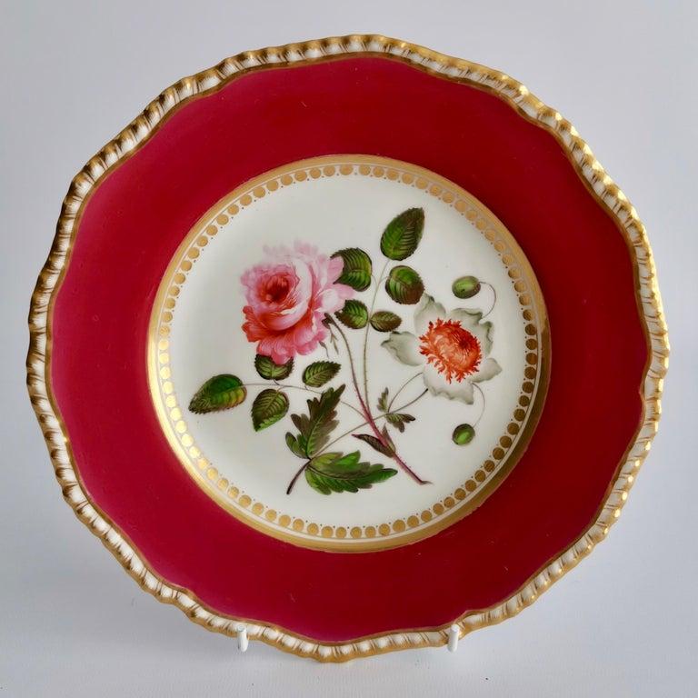 Coalport Porcelain Part-Dessert Service, Maroon Botanical Cecil Jones, 1820-1825 5