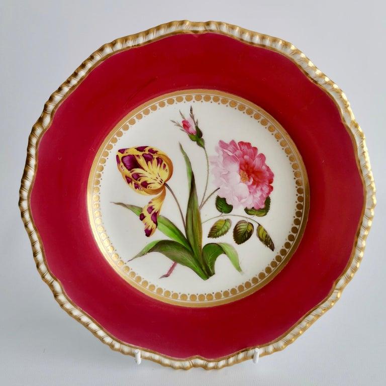 Coalport Porcelain Part-Dessert Service, Maroon Botanical Cecil Jones, 1820-1825 6