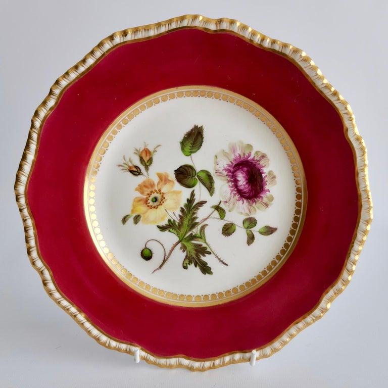 Coalport Porcelain Part-Dessert Service, Maroon Botanical Cecil Jones, 1820-1825 7
