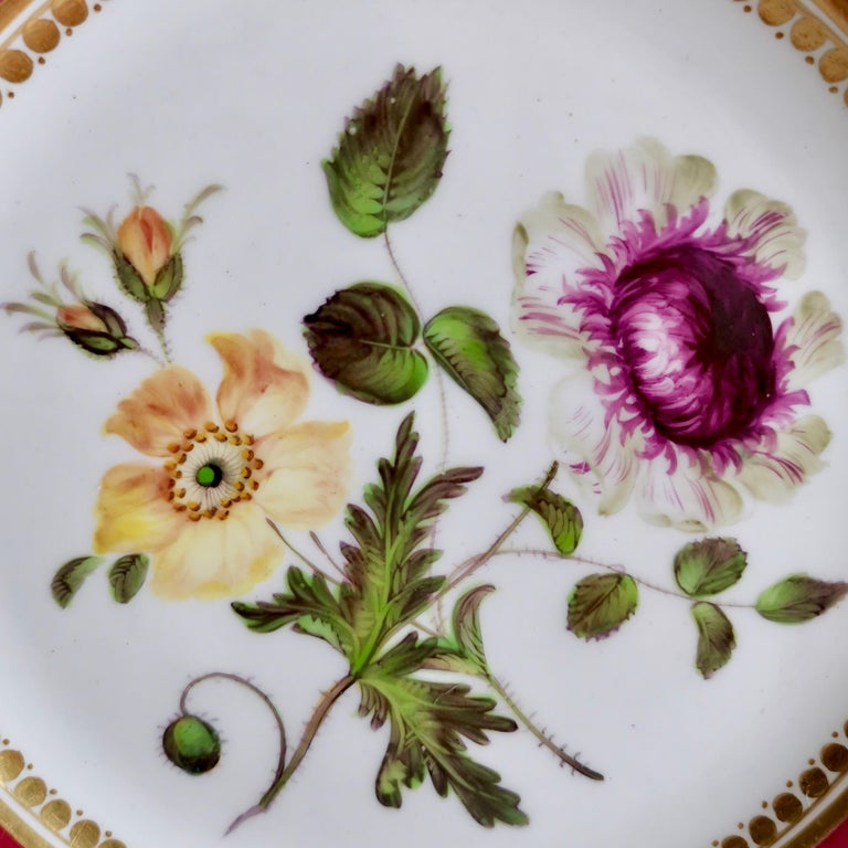 Coalport Porcelain Part-Dessert Service, Maroon Botanical Cecil Jones, 1820-1825 8