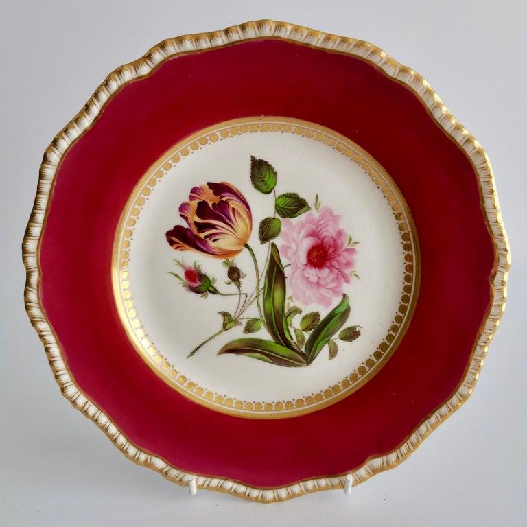 Coalport Porcelain Part-Dessert Service, Maroon Botanical Cecil Jones, 1820-1825 9