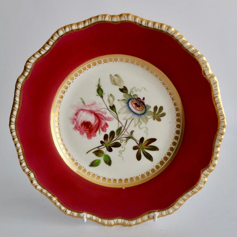 Coalport Porcelain Part-Dessert Service, Maroon Botanical Cecil Jones, 1820-1825 10