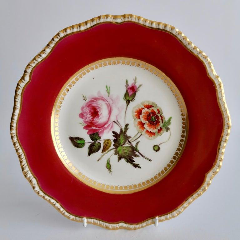 Coalport Porcelain Part-Dessert Service, Maroon Botanical Cecil Jones, 1820-1825 11