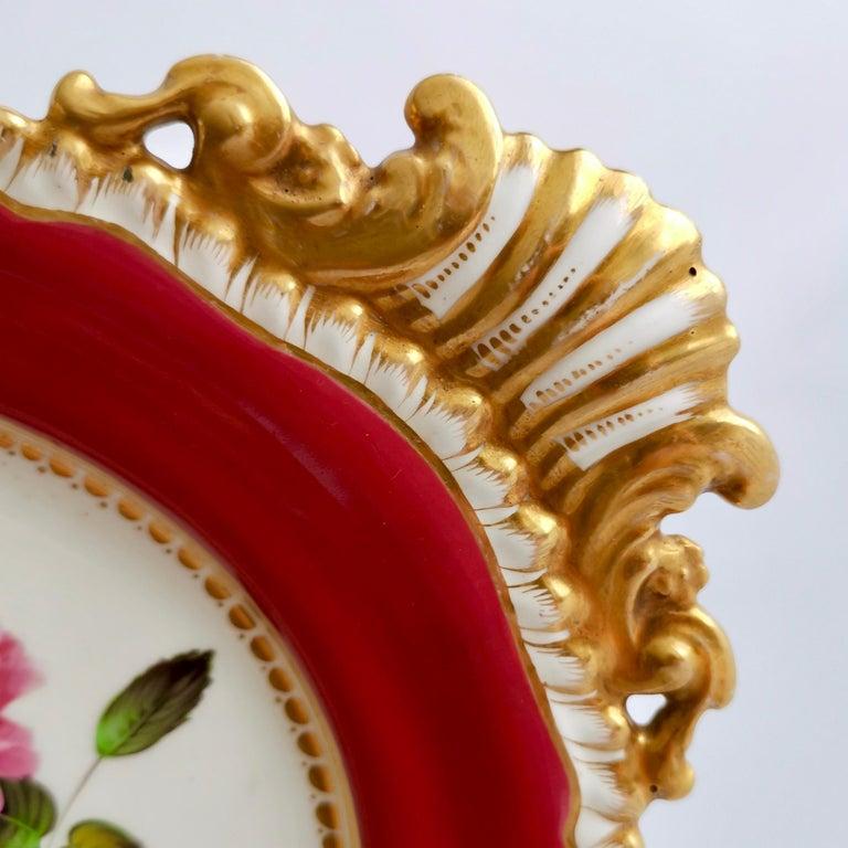 Coalport Porcelain Part-Dessert Service, Maroon Botanical Cecil Jones, 1820-1825 12