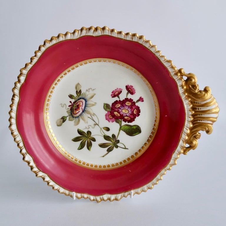 English Coalport Porcelain Part-Dessert Service, Maroon Botanical Cecil Jones, 1820-1825