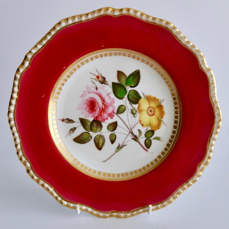Coalport Porcelain Part-Dessert Service, Maroon Botanical Cecil Jones, 1820-1825 1