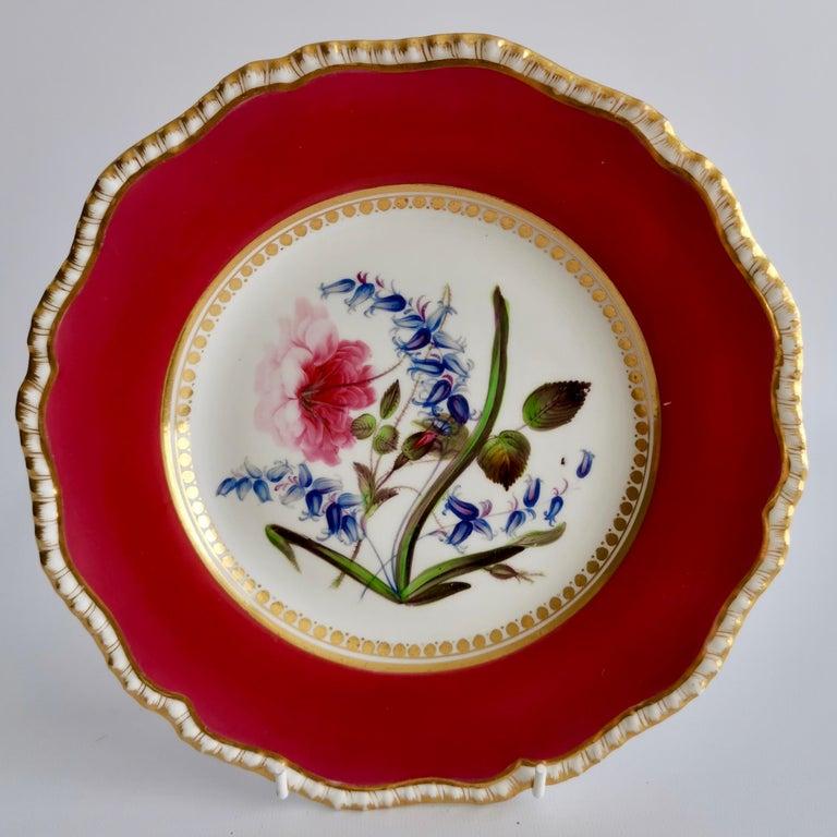 Coalport Porcelain Part-Dessert Service, Maroon Botanical Cecil Jones, 1820-1825 2