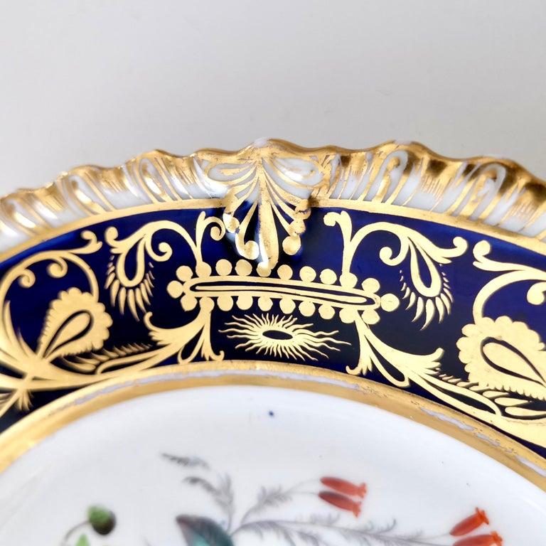Coalport Porcelain Plate, Cobalt Blue and Spectacular Flowers, Regency 1820-1825 For Sale 2