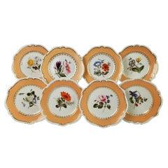 Coalport Set of 8 Porcelain Plates, Peach with Flowers, Regency 1820-1825