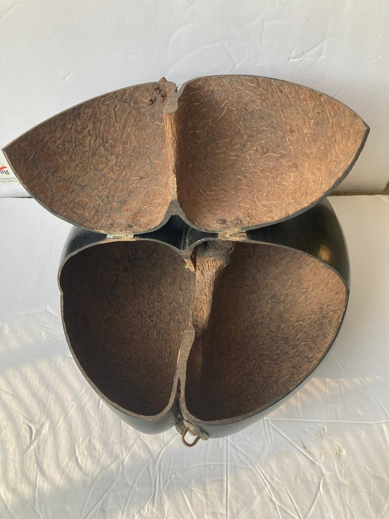 Great Coco De Mer box. This very organic sensual object has been carved and transformed for many countries thru the year. Including the name by the French and also for the UK because this come originally from Indian Ocean. Seychelles Islands.