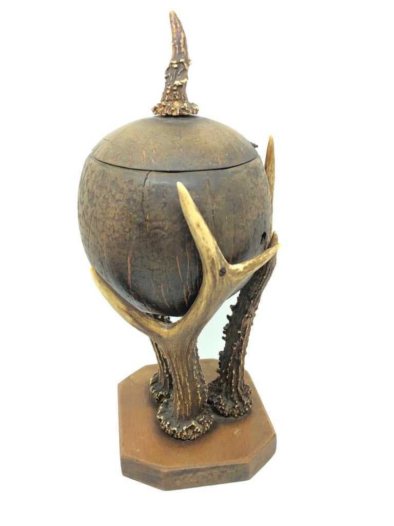 Metal Coconut and Deer Antler Trophy Catchall 1890s, Vienna, Austria For Sale