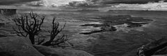 Panoramic Landscape B&W Photography: 'Canyonlands'