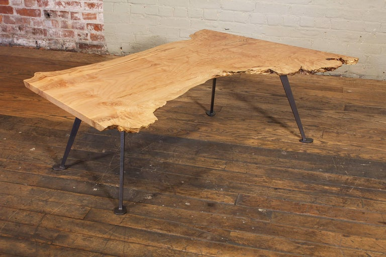 Coffee Table Free-Form Live Edge Maple Burl with Steel Legs For Sale 4